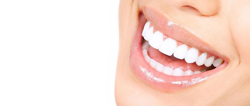 b-ortodoncia2